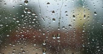 这一场雨 肖峰
